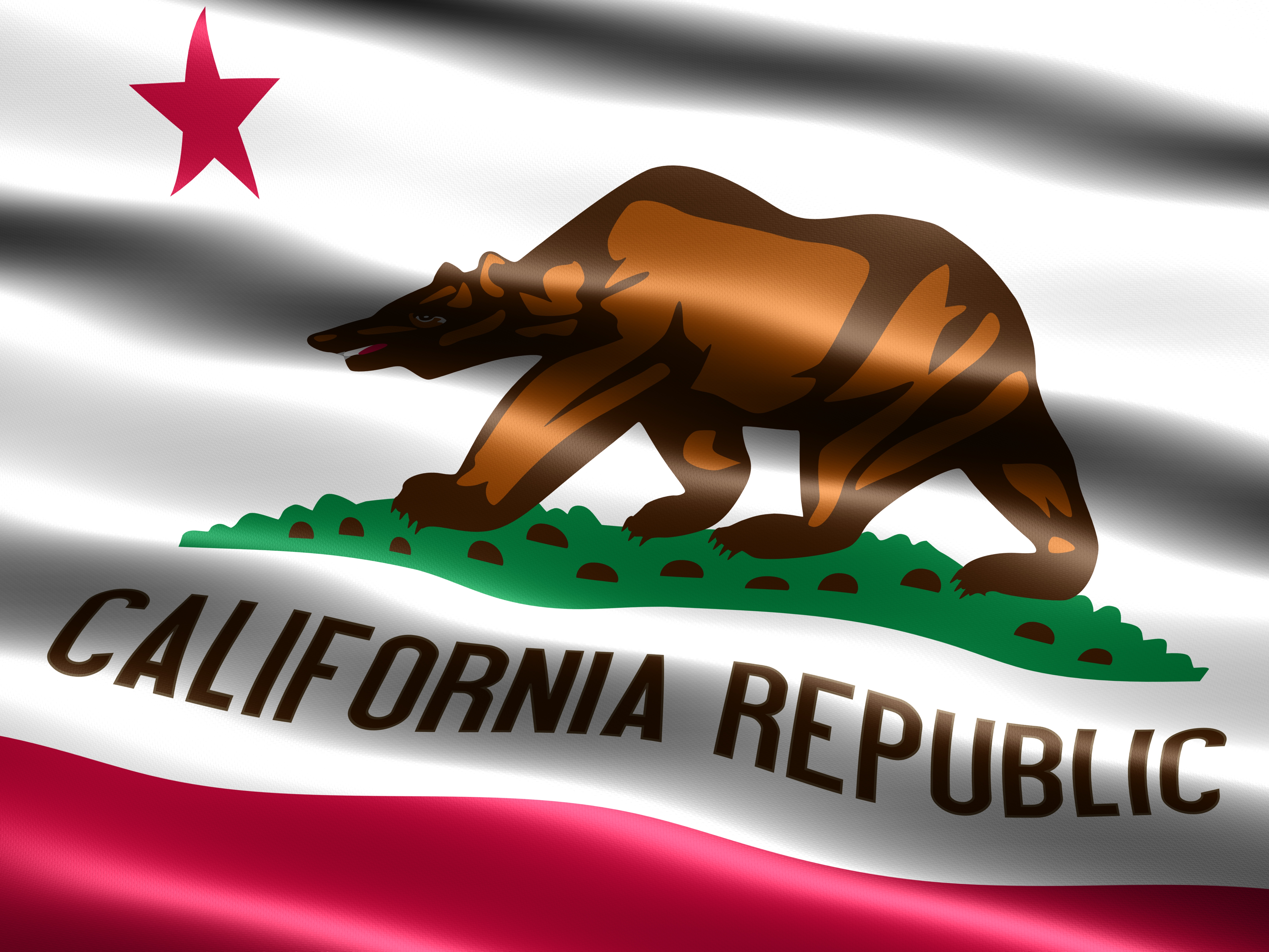 Flag Of The State California